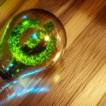 Dia mundial da eficiência energética: Pequenos e grandes gestos para consumos mais conscientes